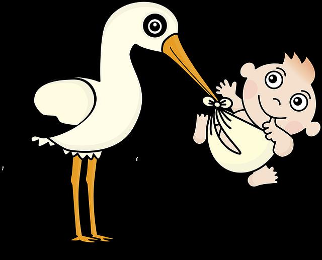čáp a dítě